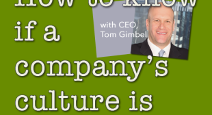 How to Know if a Company's Culture is Right For You