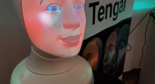 Interview: Tengai, Sweden's Recruiting Robot