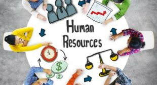 Do You Own a Successful HR Planning Strategy?