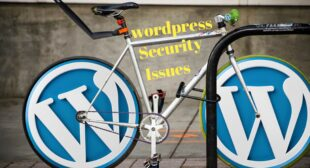 WordPress Security Issues And Tip's